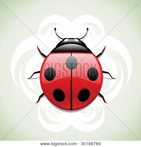 ladybug. vector ladybug illustration. ladybug and background separated layers in vector file.