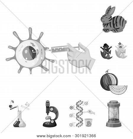 Vector Illustration Of Transgenic And Organic Logo. Set Of Transgenic And Synthetic Vector Icon For
