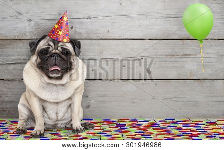 Frolic Smiling Birthday Party Pug Dog, With Confetti And Balloon, Sitting Down Celebrating, On Old W
