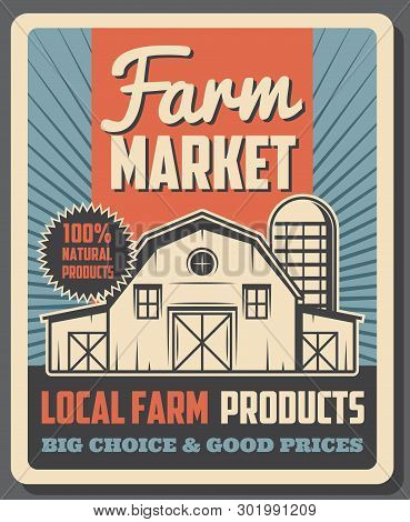 Farm Market Agriculture Food And Local Farming Products Trade Vintage Poster. Vector Farmland Barley