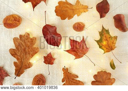 Red And Yellow Leaves Of Maple, Oak And Others On The Table With Backlit Garlands. Decorations For A