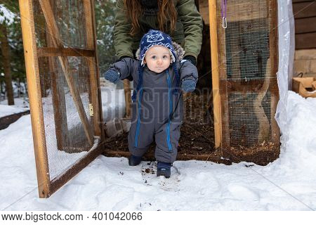 Young Mom Helping Her Baby To Stand Up And Walk In The Snow During The Exploration Of A Chicken Coop