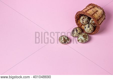 Quail Eggs On A Pink Background. Healthy Food. Quail Eggs Spilled Out Of A Wicker Basket