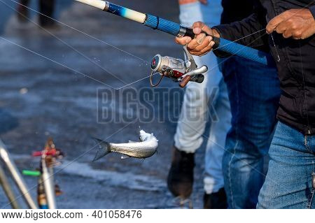 Close Up Turkish Fisherman Hooks A Freshly Caught Fish