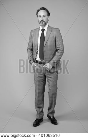 His Own Boss. Boss Man Grey Background. Boss Or Ceo. Senior Manager. Mature Man In Formalwear. Busin
