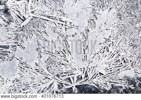 Pattern From Dried Salt On Shore Lake Ebeyty In Omsk Region, Russia. Natural Salt Crystals White Col