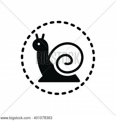 Black Solid Icon For Slowly Animal Move-slow Snail Scrimshaw Conch Concha Gastropod Marine Aquatic I
