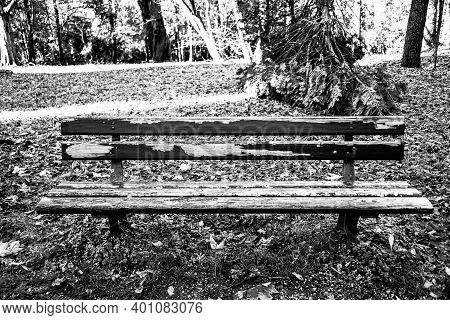 Old And Destroyed Wooden Bench With Peeling Paint And Rotten Wood