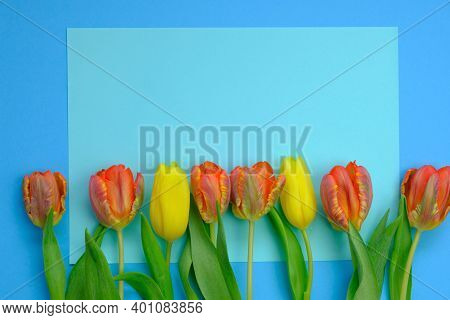 Tulips Flowers.floral Card With Tulips.red And Yellow Tulips Bouquet On A Bright Light Blue Backgrou
