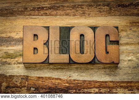 blog word in vintage letterpress wood type against textured, handmade,  banan leaf paper - blogging, internet communication and social media concept