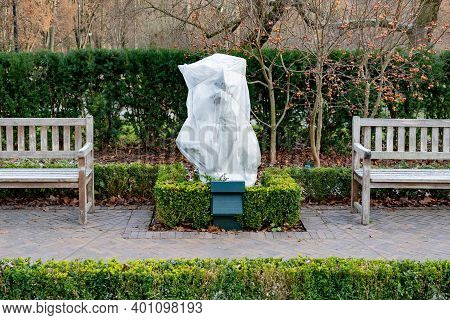 Plants And Trees In A Park Or Garden Covered With Blanket, Swath Of Burlap, Frost Protection Bags Or