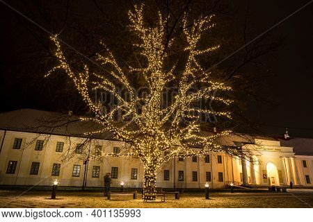 Vilnius, Lithuania - December 13, 2020: Illuminated Oak In Front Of National Museum Of Lithuania. Th