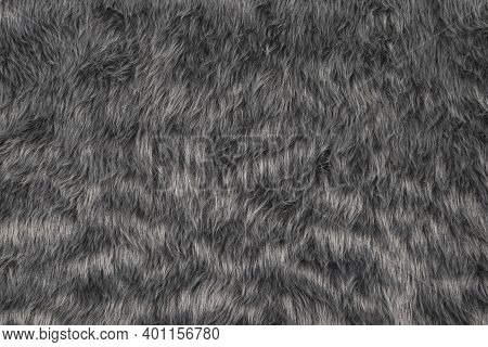 Top View Of Fur Texture Background, Grey Fur Pattern Texture