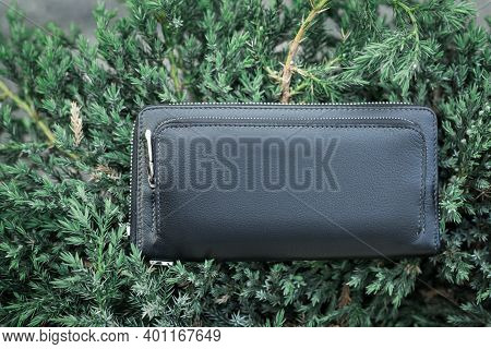 Black Wallet Purse On A Background Of Green Bushes. Mockup. Purse With No Labels.