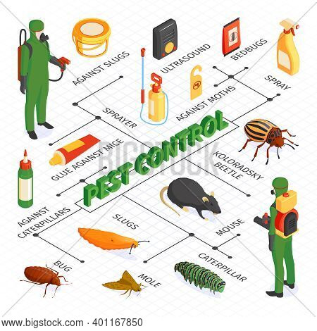Isometric Pest Control Flowchart Composition With Desinsection Products Sprays And Glues With Disinf