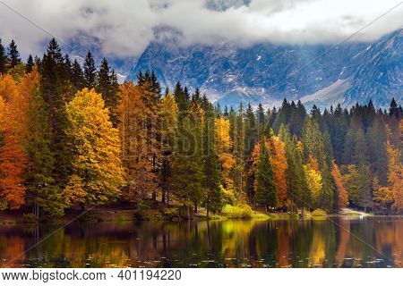 Magnificent colors of autumn. Orange and yellow trees are reflected in the green smooth water. The Alps are covered with clouds. Lake Fuzine in Northern Italy.