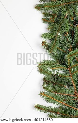 Beautiful Merry Christmas And New Year Frame Banner With Evergreen Spruce Branches On White Backgrou