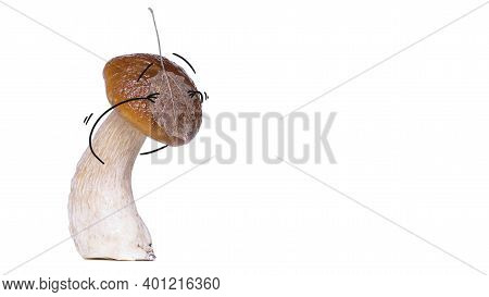Сep Mushroom (penny Bun, Porcini, Boletus Edulis) Or Red-capped Scaber Stalk (leccinum Fungi) With A