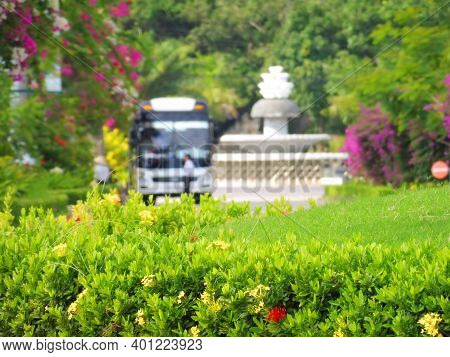 Luscious Greenery Of Tropical Bushes And Lawns And Blurred Background Tourist Bus