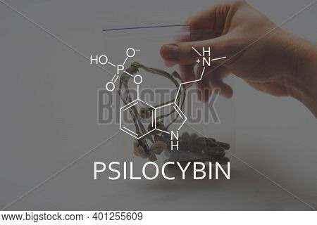 Psilocybin Formula Mushrooms. Medical Psilocybin On The Health Of Mental Health. Psychoactive Natura