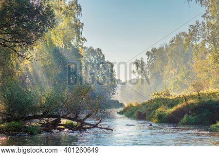 Morning summer river in fog