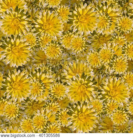 Seamless Floral Pattern In Cark Colors, Print Design Element For Fabrics Or Packaging