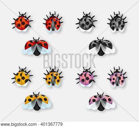 Ladybug Set: Red, Yellow, Pink And Monochrome. Ladybug Isolated On Light Background
