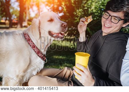 Man Feeds His Dog Snacks For Obedience In Park