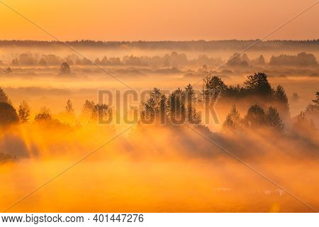 Amazing Sunrise Light Above Misty Landscape. Scenic View Of Foggy Morning In Misty Forest Park Woods