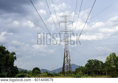 Electricity Transmission Line With Green Tree Nature, Green Conservative Energy, Energy Be Friendly