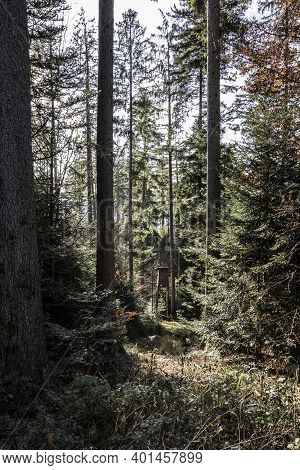 Small Raised Hide For Hunting In The Middle Of The Forest