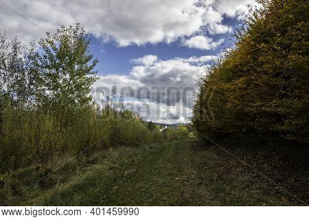 Colorful Leaves, Green Meadows, And The Cloudy Blue Sky