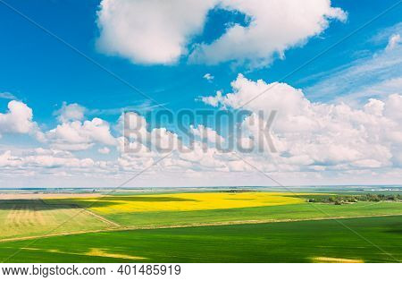 Aerial View Of Agricultural Landscape With Flowering Blooming Rapeseed, Oilseed And Green Young Whea