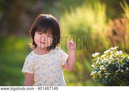 Sweet Asian Little Child Stands To Watch The Flowers In A Green Meadow Reflect The Golden Yellow Sun