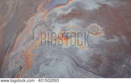 Oil Slick Looks Like A Bird On The Asphalt Road Background. Oil Stain On Asphalt, Color Gasoline Fue