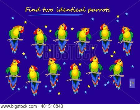 Logic Puzzle Game For Children And Adults. Find Two Identical Parrots. Printable Page For Kids Brain
