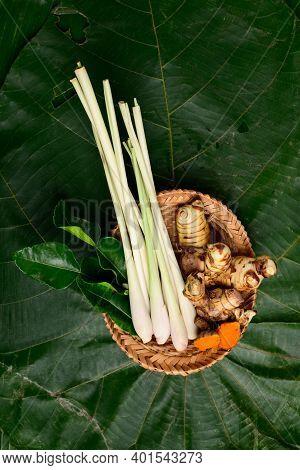 Fresh Organic Thai Spices (lemon Grass, Galangal, Kaffir Lime Leaf And Turmeric) On Green Leaf Backg