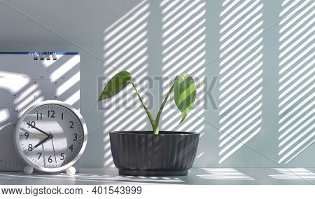 Sunlight And Shadow On Surface Of Little Green Houseplant In Flowerpot With Round Table Clock And De