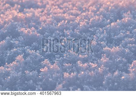 Beautiful Pink Snow On A Sunny Cold Winter Morning