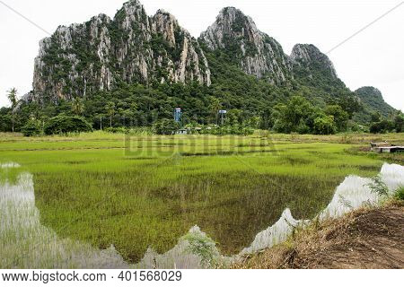View Landscape Paddy Rice Field And Landmarks Kaonor Kaokaew Limestone Mountains For Thai People And