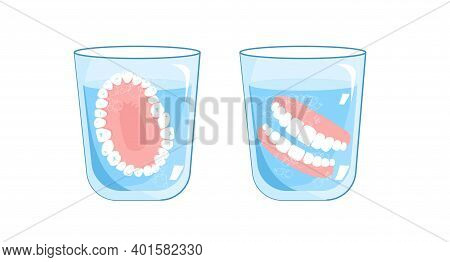 False Jaw In Glass With Water.top,front View.denture,a Removable Plate Or Frame Holding Artificial T
