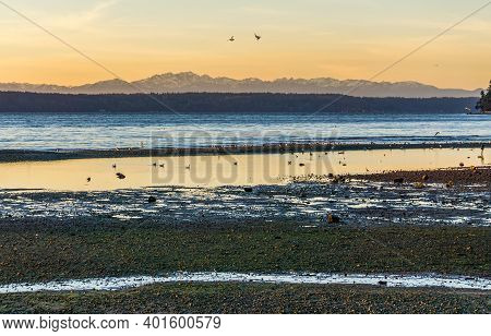 A View Of The Shoreline And The Sea In Des Moines, Washington.