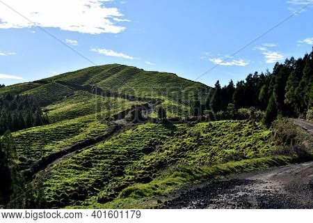Beautiful Dirt Hiking Trail In The Azores In Portugal.