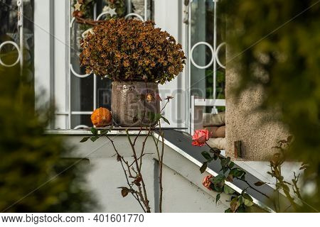 Flowerpot Located In The Balcony An Old And Stylish Building In Prague 6, Close To Hradcanska Tram S
