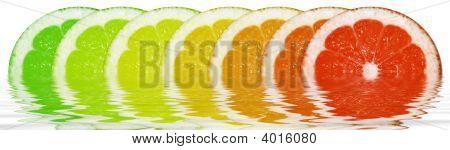 Circular Lemons In The Water