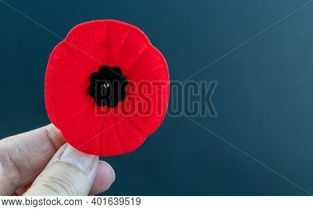 Red Poppy Held In By Female Hand
