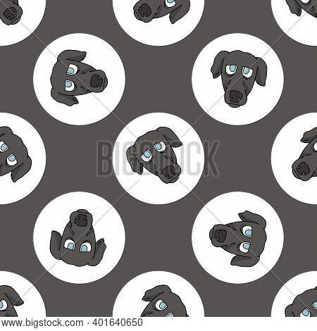 Hand Drawn Cute Greyhound Dog Face Breed In Polka Dot Seamless Vector Pattern. Purebread Pedigree Pu