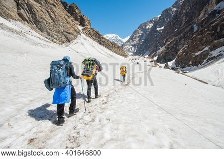 Group Of Trekker Hiking On The Snowy In Modi Khola Valley On The Way To Annapurna Base Camp, Nepal.
