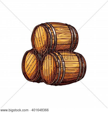Wooden Cask With Alcohol Drink Isolated Oak Tanks Sketch. Vector Barrels With Wine, Beer, Rum Or Win
