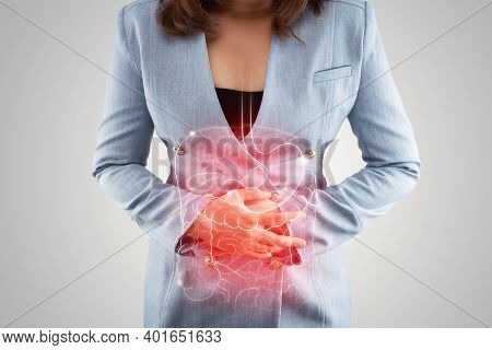 Illustration Of Internal Organs Is On The Woman's Body Against The Gray Background. Business Woman T